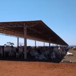 Oportunidades com uso de sombra para bovinos confinados no Brasil
